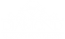 DiamondDoors-Logo-03.png