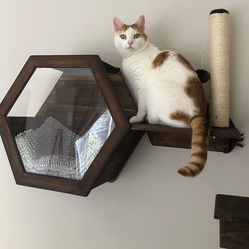 Wall Mounted Cat Scratching Post Step