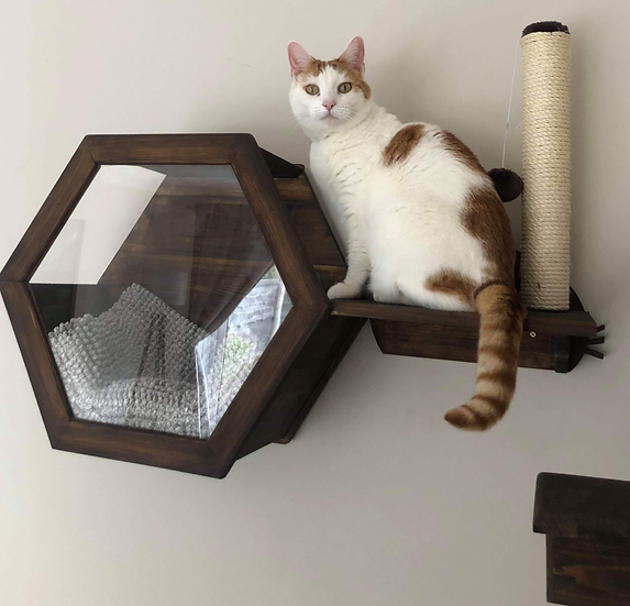 Wall Mounted Hexagon Cat Bed