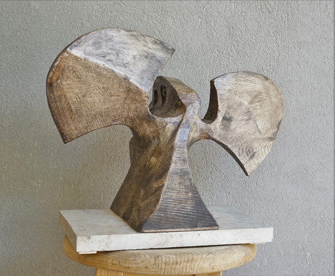 Korona bird