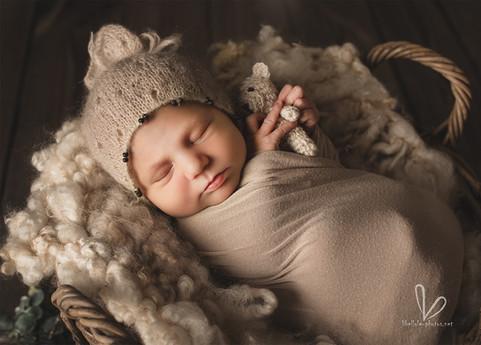 Nouveau-né avec doudous dans le panier.
