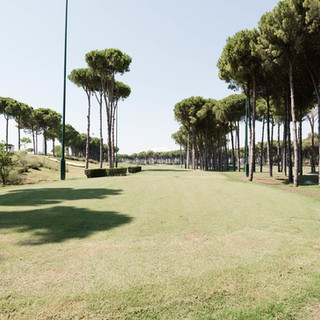 golf--v8856640.jpg