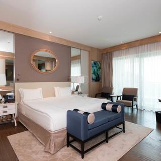 standard-room--v8856409.jpg