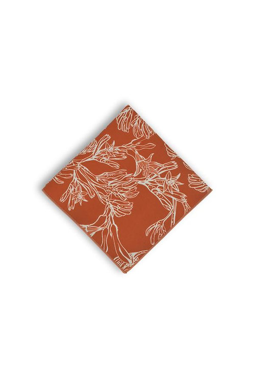 Pocket Square - Kangaroo Paw Burnt Orange