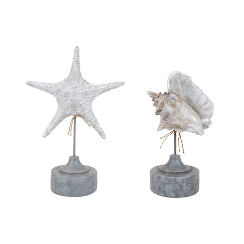 Hamshire Resin Wash Starfish Shell 2 Assorted (sold separately)