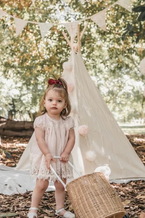 Sugar Plum Baby Dress - Blush