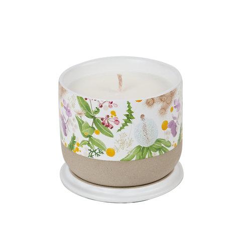 Candle Banksia & Wattle w/ Louise Jones