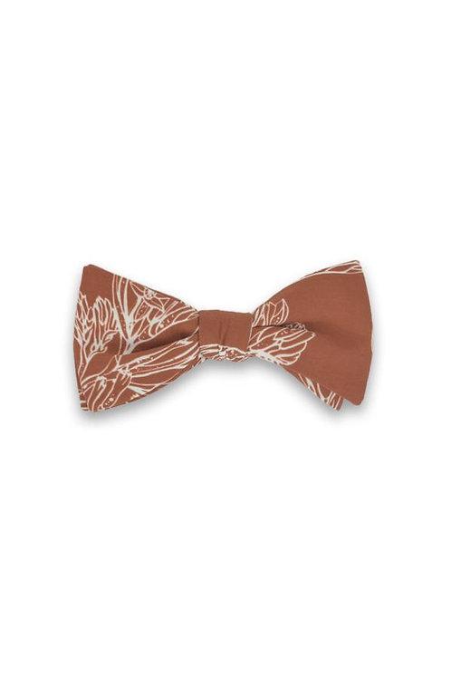Bow Tie - Kangaroo Paw Burnt Orange