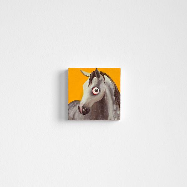 15_horsesense.jpg