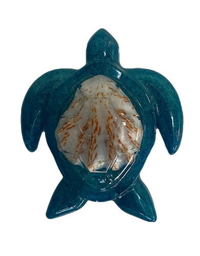 Handmade Beach Themed Dark Turquoise Sea Turtle Magnet with Genuine Cat's Paw Shell