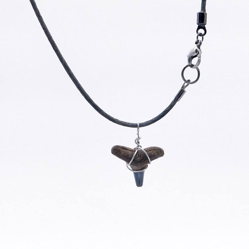 Sea Inspired Jewelry Real Shark Tooth on Dark Gray Choker