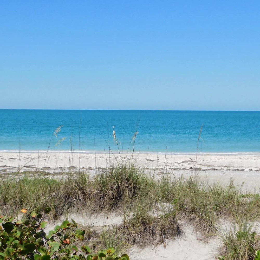 Beach_Gulf_of_Mexico