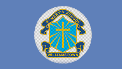St Mary's Williamstown Primary School Orchestra / Music Classes