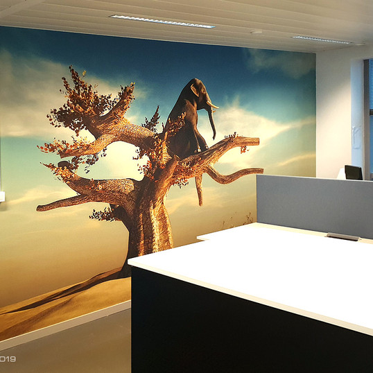 BIPT Brussels   WallTex Pro