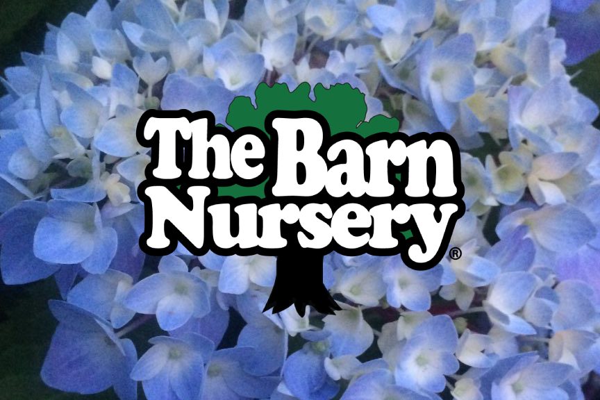 Garden Center | Chattanooga | Barn Nursery