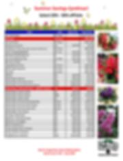 Summer Savings Sale-Version 1c_Page_1.pn