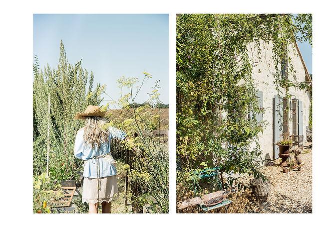 Planche jardin12.jpg