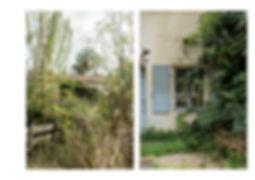 Planche jardin18.jpg