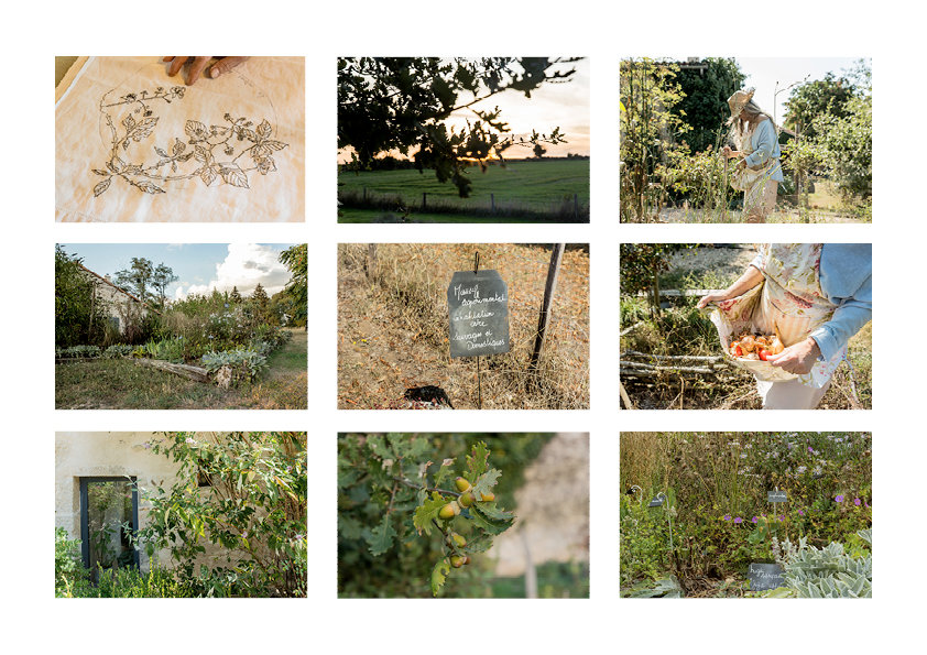 Planche jardin10.jpg