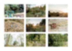 Planche jardin8.jpg