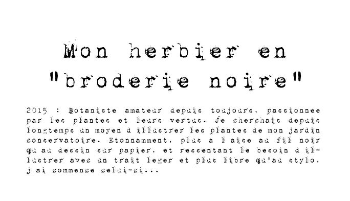 Herbier broderie noire 1.jpg