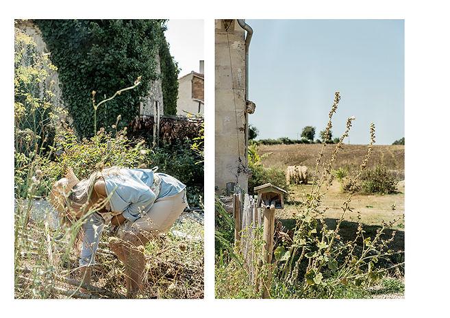 Planche jardin13.jpg