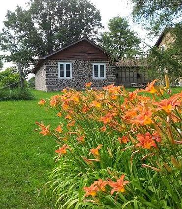 View of Hidden Buddha Healing Center - corkwood house, green grass, blooming tiger lilies