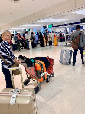return to  HANEDA airport