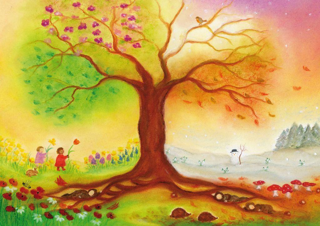 S1017_Vierseizoenenboom