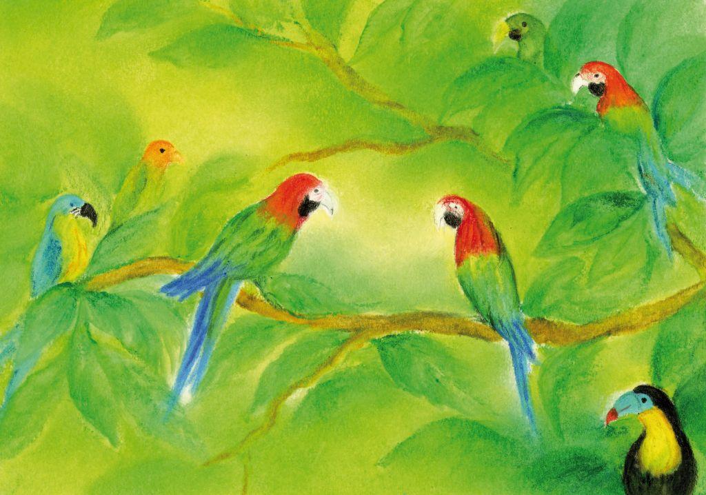 D1018_De papegaai