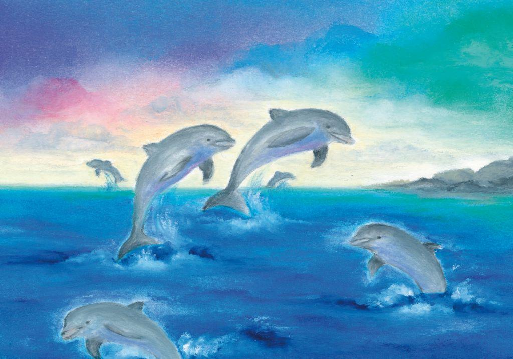 W1003_Dolfijnen