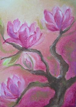 B1000_Magnolia