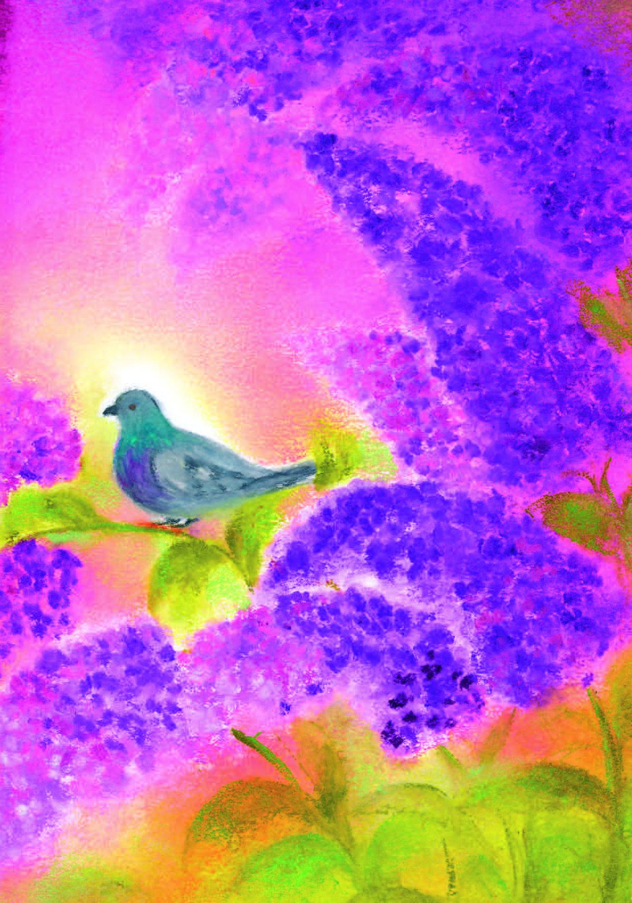 D1015_De duif