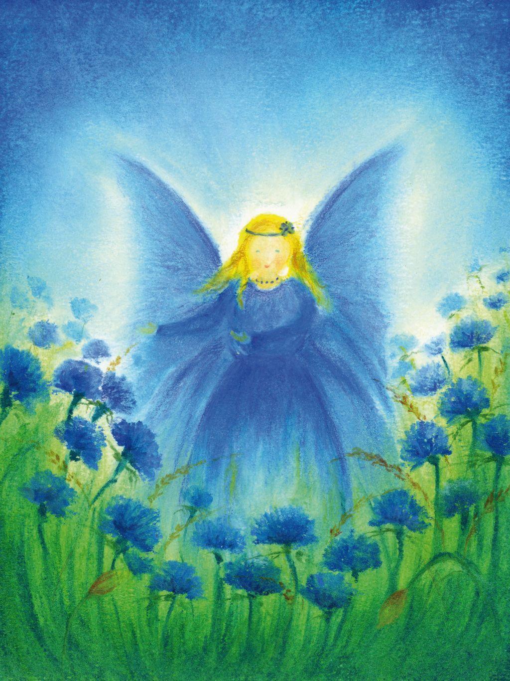 S1006_Het vlindervrouwtje