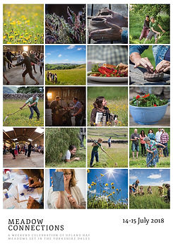 Flyer for Meadow Connections with multiple images of meadows, meadow flowers, sything and food