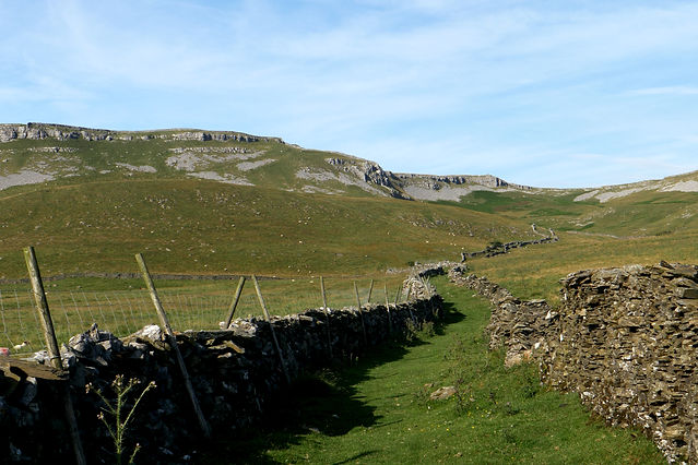 Green moorland with rocky limestone outcrops. This is divided by a drystone walled drovers road.