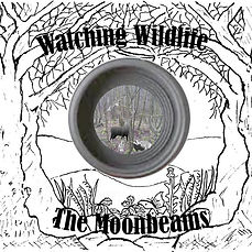 Album cover for Watching Wildlife. A pencil drawing of trees and flowers with a central circle containing wild animals in the woodland