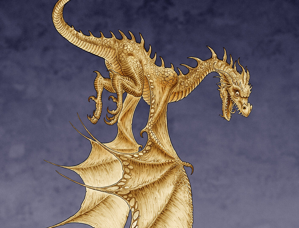 DRAGONOLOGY Kids Online Art Class  Friday 6th August 3:30 - 5pm