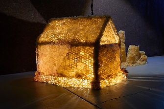 Kath Fries, Abode (2018) beeswax, wire,