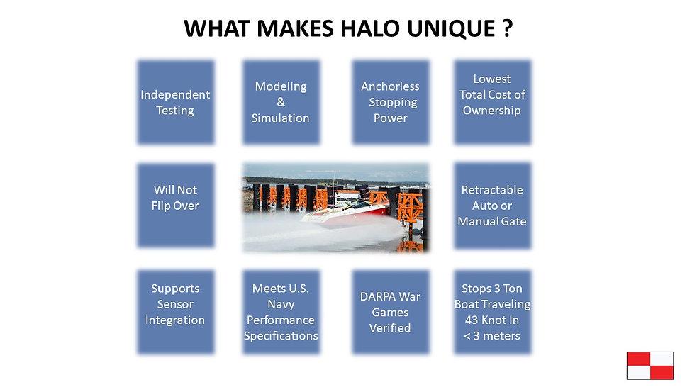What makes HALO UNIQUE JPG.jpg