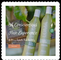 Hair Salon Website Design by Dream Escape Design in Portland Or
