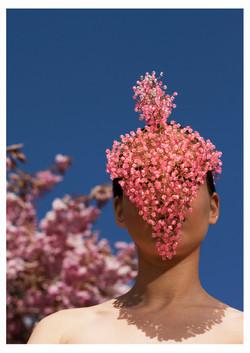 Pink Fashion Philosophy