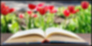 Open book on a table on a blurred backgr