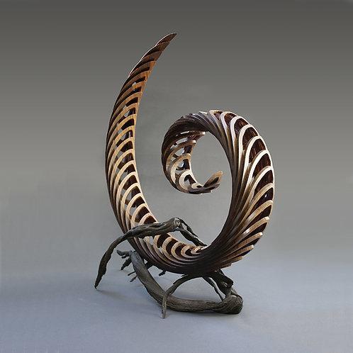 Life's Spiral
