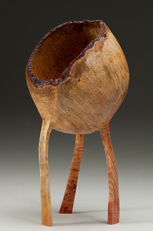 Madrone Burl Walkabout