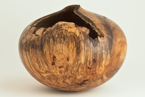 Spalted Natural Maple Burl Hollow Form
