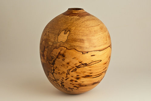 Spalted Winged Elm Hollow