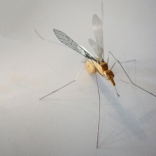 Mosquito USB
