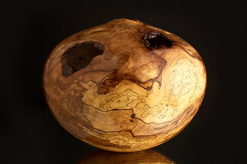 St. Pauls Ultra Gloss Spalted Dogwood Hollow Form