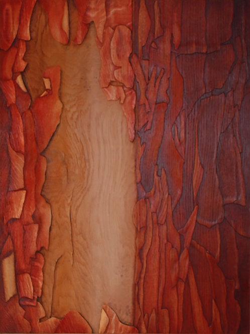 Treebark III